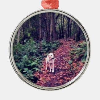 Woodland Walk Metal Ornament