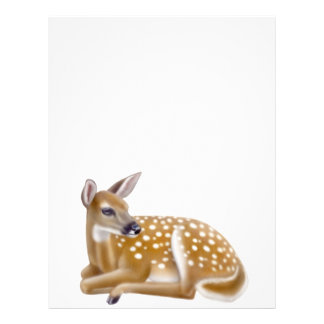 Woodland White Tailed Deer Fawn Letterhead