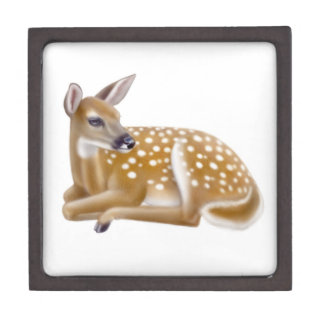 Woodland Whitetail Deer Fawn Premium Gift Box