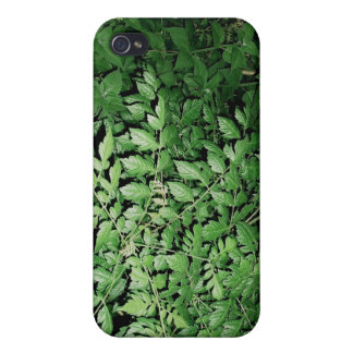 woodlands covers for iPhone 4