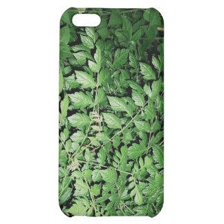 woodlands iPhone 5C case