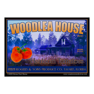Woodlea House Tavares poster