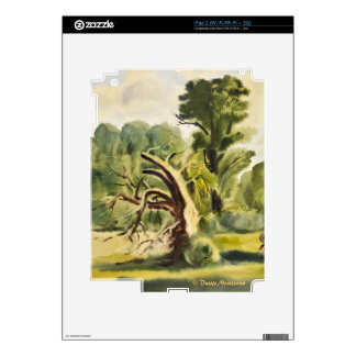 Woodman's House watercolor painting Skins For The iPad 2