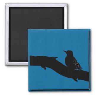 Woodpecker 2 Inch Square Magnet