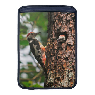 Woodpecker and chick MacBook air sleeve