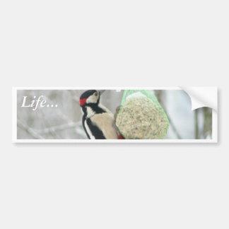 Woodpecker Animal Car Bumper Sticker