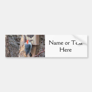 Woodpecker at Bird Feeder Car Bumper Sticker
