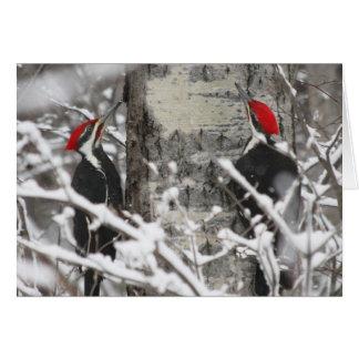 Woodpecker In Winter Greeting Card