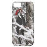 Woodpecker - iPhone 5 Case
