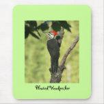 Woodpecker Mousepad
