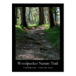 Woodpecker Nature Trail Postcard