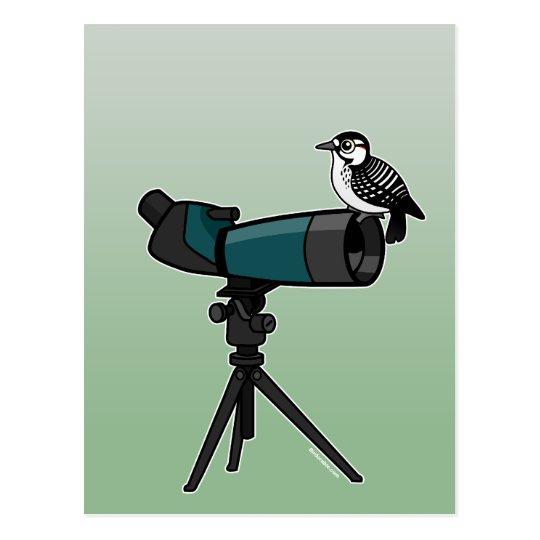 Woodpecker on Spotting Scope Postcard