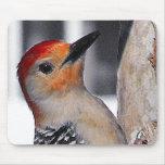 Woodpecker Portrait Mousepad