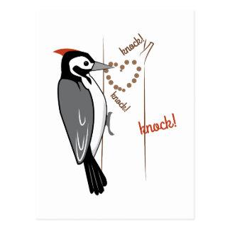 Woodpecker Postcards