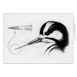 Greeting Card with Woodpecker Tongue Anatomy design