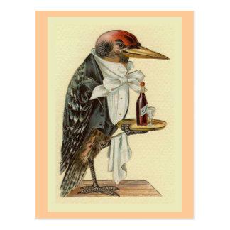 Woodpecker Waiter Vintage Bird Illustration Postcard