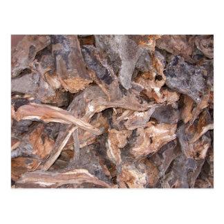 Woodpile en postal del invierno