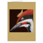 Woodrow the pileated woodpecker card