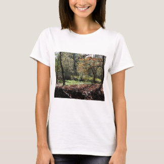 woods in autumn T-Shirt