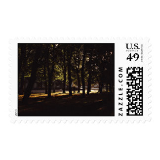 Woods Themed, A Person Walks Alone In The Shady, D Postage Stamp