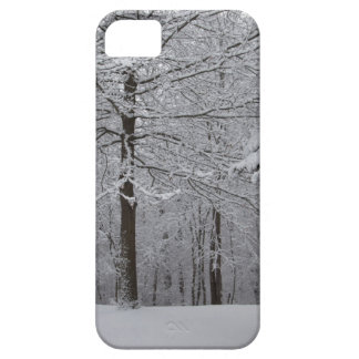 Woods View iPhone SE/5/5s Case