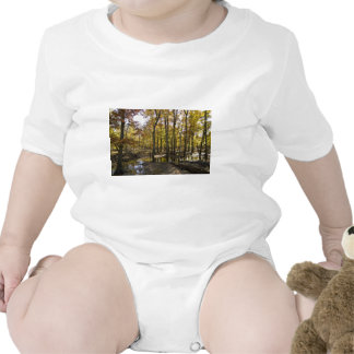 Woods with standing water bodysuit