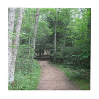Woodsy Trail Tile
