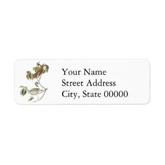 Woodthrush, John Audubon Custom Return Address Labels