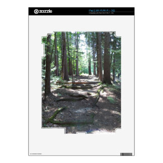 Woody Way Skins For The iPad 2