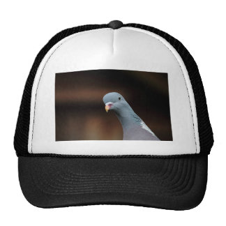 Woody wood pigeon trucker hat