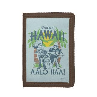 Woody y zumbido - recepción a Hawaii