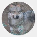 Woof Round Stickers