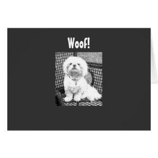 "WOOF-U LOOK GOOD FOR ""40"" GREETING CARD"