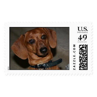 Woofers1, Ruby Postage