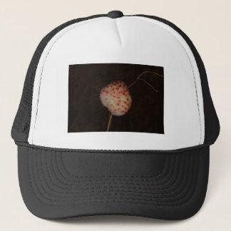 Wool Sower Gall Trucker Hat