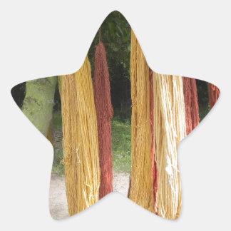 Wool Star Sticker
