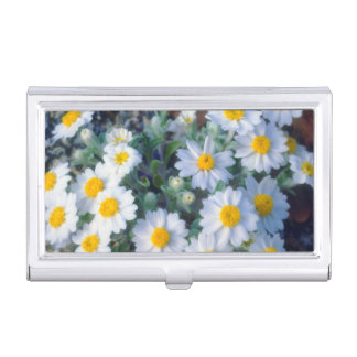 Woolly Daisy Wildflowers Case For Business Cards