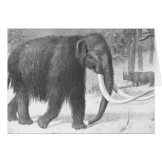 Woolly Mammoth Antique Print Greeting Card