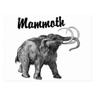 Woolly Mammoth design Postcard