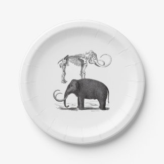 Woolly Mammoth Pre-Historic Elephant and Skeleton Paper Plate