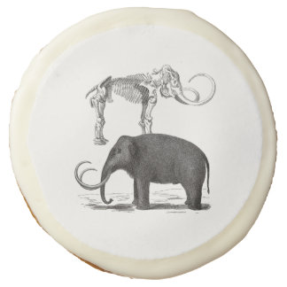 Woolly Mammoth Pre-Historic Elephant and Skeleton Sugar Cookie