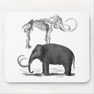 Woolly Mammoth Prehistoric Elephant and Skeleton Mouse Pad