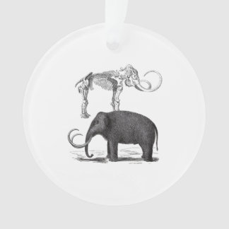 Woolly Mammoth Prehistoric Elephant and Skeleton Ornament