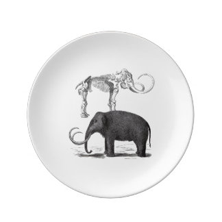 Woolly Mammoth Prehistoric Elephant and Skeleton Porcelain Plate