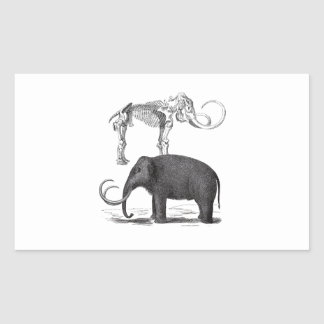 Woolly Mammoth Prehistoric Elephant and Skeleton Rectangular Sticker