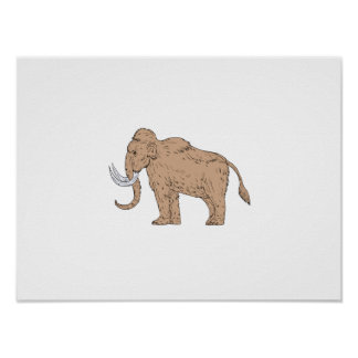 Woolly Mammoth Side Drawing Poster