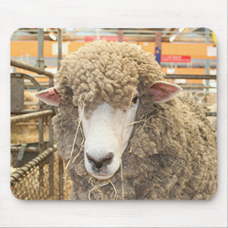 Woolly sheep face mouse pad