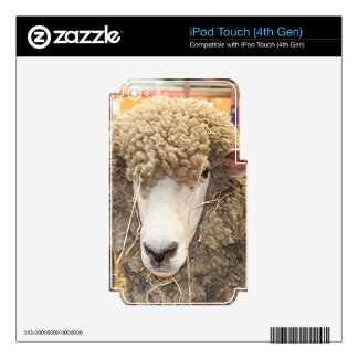 Woolly sheep face skin for iPod touch 4G
