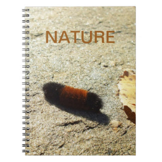 Wooly Bear Caterpillar Spiral Notebook