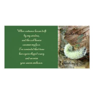 Wooly Bear Worm Photo Card w/Poetic Verse
